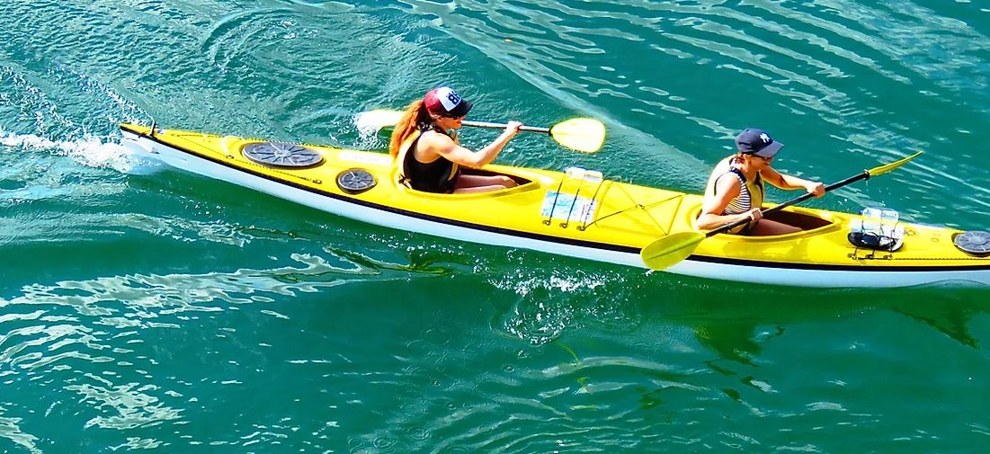 sydney harbour kayak in green water