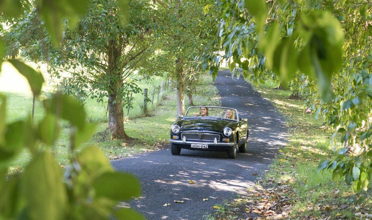 kangaroo valley driving car down narrow road